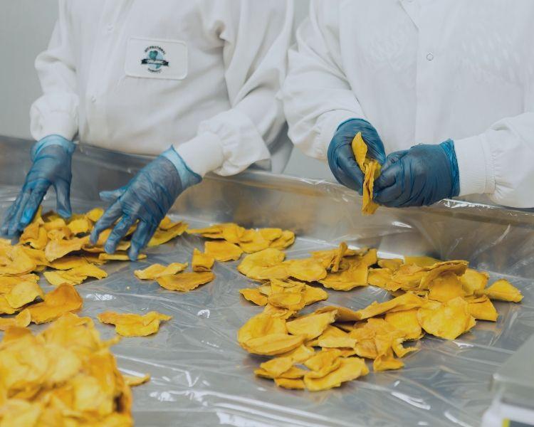 Food manufacturing, crisps